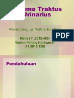 Referat dr Soni, SpU.pptx