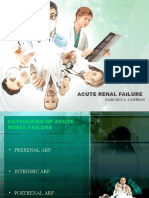 Acute Renal Failure-ppt2