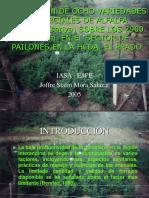 T-ESPE-002945-P