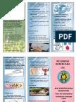 100377116-Leaflet-Kb.pdf