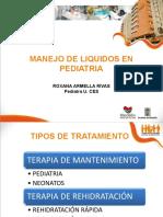 manejo-de-liquidos-en-pediatria.pdf