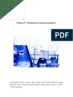 Práctico Numero 1 Quimica Organica