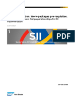 SII Workpackages Pre-requisites v 0.0