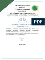 INFORME DE PRACTICAS PREPROFESIONALES.docx