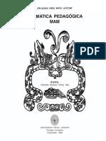 Idioma-mam.pdf