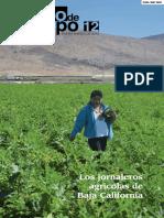 Diario Jornaleros