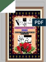 Arbi ke pakistani zobanoon par lisanyati asraat