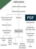 Patofisiologi sindrom nefrotik