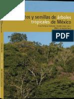 Frutos y semillas de arboles tropicales de mexico.pdf