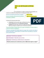 6 Sistema Endocrino (1)