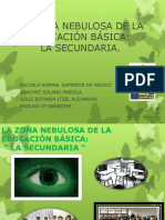 La Zona Nebulosa de La Educación Básica (4)