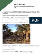 Dátiles de Alicante (Elche)