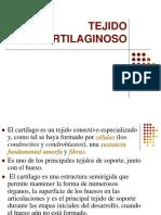 TEJIDO_CARTILAGINOSO