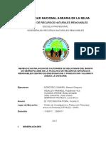 Redaccion Del Informe Peups-frits