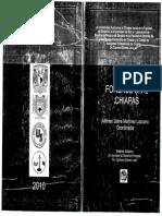 201701241355-02Práctica Forense Civil Chiapas