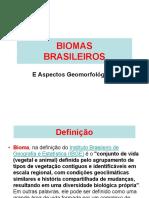08 - Biomas Brasileiros.2017