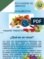 Seguridad Virus