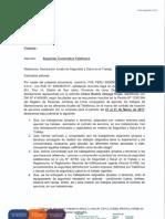 Formato-Declaracion de Seguridad y Salud Ambiental