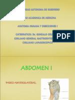 Abdomen i (Pared Anterolateral)