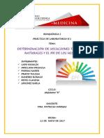 Informe Practica Quimica 1 1