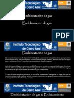 Deshidratador y Endulzadora de Gas