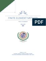 Fem Report