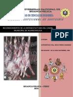 Informe Carnes 2