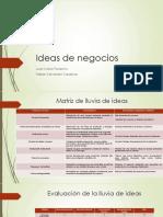 Ideas de Negocio 1.1 Grupo
