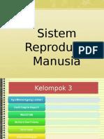 sistemreproduksimanusia-140416211350-phpapp02.ppt