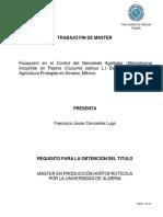 9. Control de Meloidogyne Incognita en Pepino Bajo Cubierta (Cervantes)