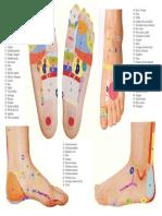 Reflexoterapia - Mapa Oriental