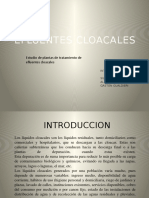 efluentescloacales.docx