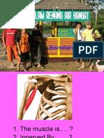 Kuliah Anatomi