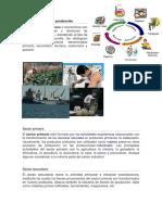Sectores de producción.docx