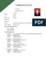 Curriculum Vitae Model 2