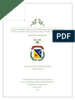 ChaparroFiracativeJoseCarlos2016.pdf