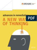 Advances in Remediation-eBook