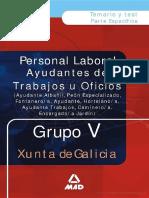 Ayudantes de Trabajos U Oficios . Grupo v. Temario Y Test.e-book.