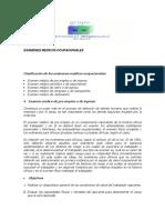 examenesmedicosocupacionales-100925084648-phpapp01.docx