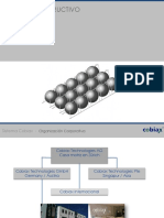 Presentación Sistema COBIAX