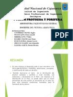 PYLLUM_PROTOZOA_Y_PORIFERA_-_GRUPO_N_01.pdf