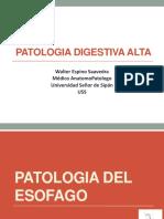 01.-Patologia Digestiva Alta Teoria