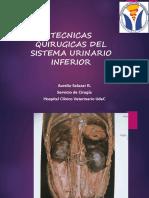 Tecnica Quirúrgicas Sistema Urinario.