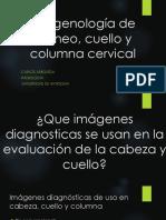 08-08-16 Imagenología de Cráneo, Cuello y Columna Cervical