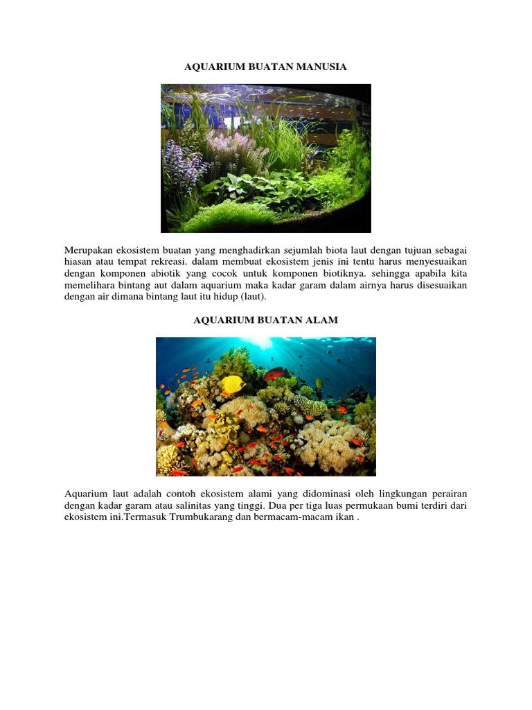 Aquarium Buatan Manusia
