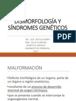 Dismorfologia y Teratologia
