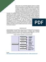 birremediacion-inf.docx