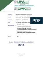 Informe Del Maiz Hibrido