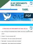 TADEL - O Processo de Crescimento de Uma Célula