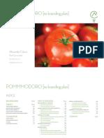 Pommmodoro - Rebranding Plan - Indice [ITA]